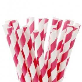 20 Pailles papier pour cake pops motif rayures roses fushia HoM